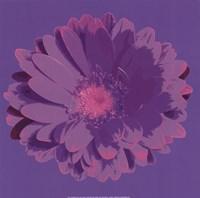 Flower III Fine Art Print
