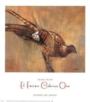 El Faisan Cobrizo One Fine Art Print