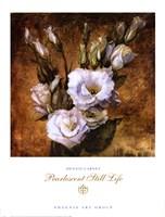 Pearlescent Still Life Fine Art Print