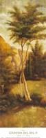 Canyon del Sol II Fine Art Print