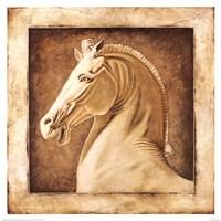 Equus Fine Art Print