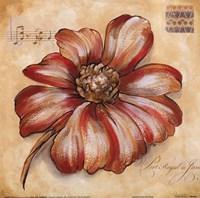 Blossoms IV Fine Art Print