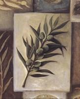 Cuisine De Provence II Fine Art Print