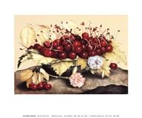 Piatto di Baccelli Fine Art Print