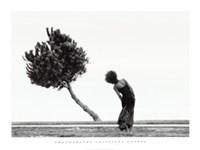 The Tree Fine Art Print