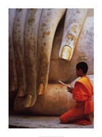 The Hand of Buddha Framed Print