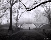 Gothic Bridge, Central Park, NYC Framed Print