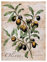 Olives Fine Art Print