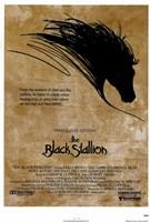 Black Stallion Wall Poster