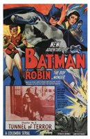 Batman and Robin Tunnel of Terror Framed Print