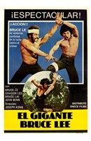 The Clones of Bruce Lee Wall Poster