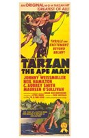 Tarzan the Ape Man, c.1932 Framed Print