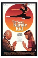The Next Karate Kid Wall Poster
