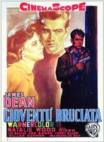Rebel Without a Cause with a Gun Wall Poster
