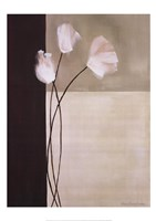Floral Whispers II Framed Print