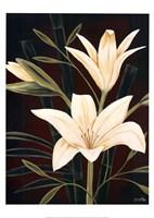 Botanical Elegance I Fine Art Print