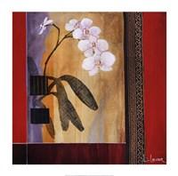 Orchid Lines I Framed Print