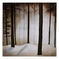 Winter Solace Fine Art Print