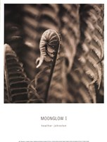 Moonglow I Framed Print