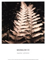 Moonglow III Framed Print