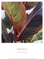 Vermillion III Fine Art Print