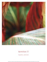 Vermillion IV Fine Art Print