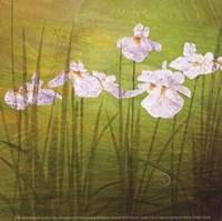 Garden Delights II Fine Art Print