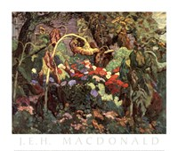 Tangled Garden Fine Art Print