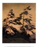 Pine Island, Georgian Bay Fine Art Print