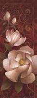 MagnoliaMelodyII Fine Art Print