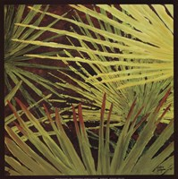 Three Palms, Panel A Fine Art Print