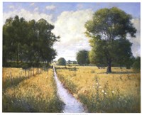 The Meadow Fine Art Print