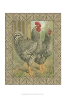 Cassell's Roosters with Border II Fine Art Print
