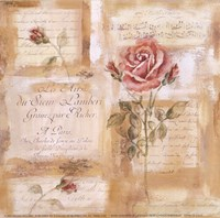 Rose Concerto II Fine Art Print