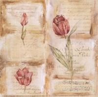 Rose Concerto III Fine Art Print