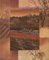 Vineyard Sunset Fine Art Print