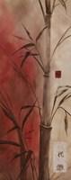 Bamboo Design II Fine Art Print