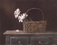 Orchid Basket Fine Art Print