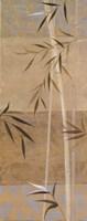 Spa Bamboo II Fine Art Print