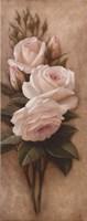 Pink Petals I Framed Print