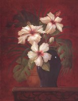 Tropical Hibiscus II Framed Print