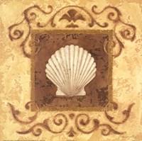 Stylized Shell I Fine Art Print