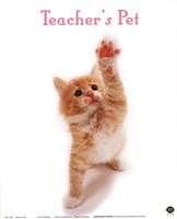 Teacher'S Pet Fine Art Print