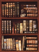 Library Fine Art Print