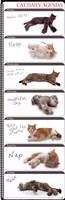 Cat Agenda Fine Art Print