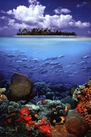 Tropical Scenery I Wall Poster