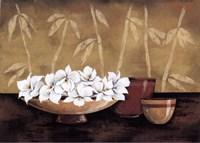Still life and white bloom I Fine Art Print