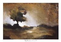 Tree in Fall Fine Art Print