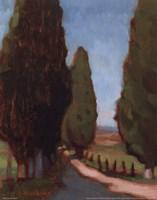 Cypress Trees I Fine Art Print