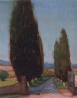 Cypress Trees II Fine Art Print